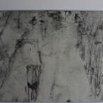 Steg.vom Bodden aus / 40x50 / Zeichnung,Radierung,Tusche