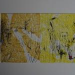 Am Bodden, Im Schilf / 40x50 / Radierung,koloriert